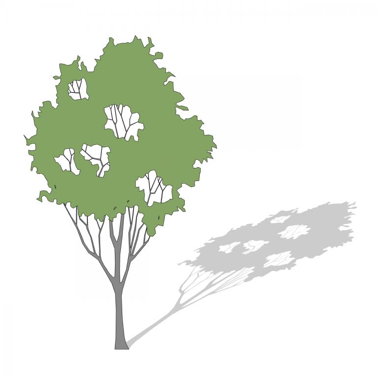 25_Smart-Tree-3D