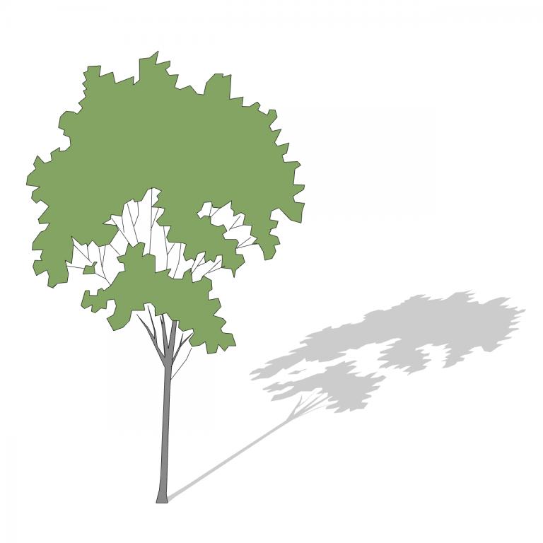 29_Smart-Tree-3D