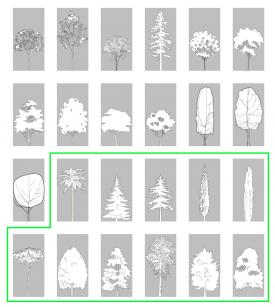 41_Tree_Updated-planselevations-1-600x307_B